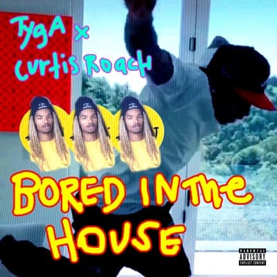 Bored in the House - Single