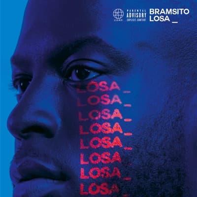 Losa_Bramsito