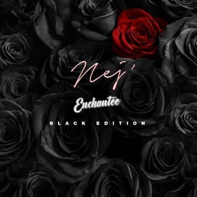 Enchantée (Black Edition)